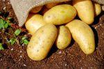 potatoes_1585075_960_720.jpg