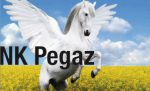 pegaz_2.jpg