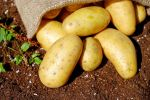 potatoes_1585075_960_720.jpg