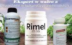 rimel_2.jpg