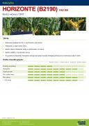 NASIONA KUKURYDZY HORIZONTE (B2190) FAO 200
