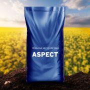 Rzepak ozimy ASPECT 1,5mln F1 Limagrain - nasiona rzepaku  Zaprawiana zaprawa Cruiser