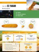 Nasiona kukurydzy ES YAKARI FAO 210