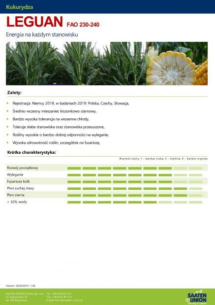 Nasiona Kukurydzy LEGUAN FAO 230-240 NOWOŚĆ