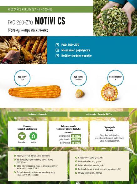 Nasiona kukurydzy Motivi CS FAO 260-270