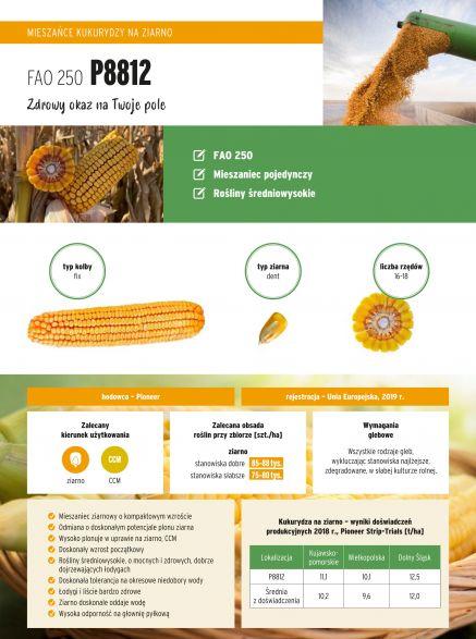 Nasiona kukurydzy P8812 FAO 250